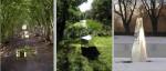 speil i natur tre bilder
