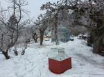Våronn i hagen. Februar/mars. Epletrærne er klippet  og drivhuset venter  på at varmeovn blir montert